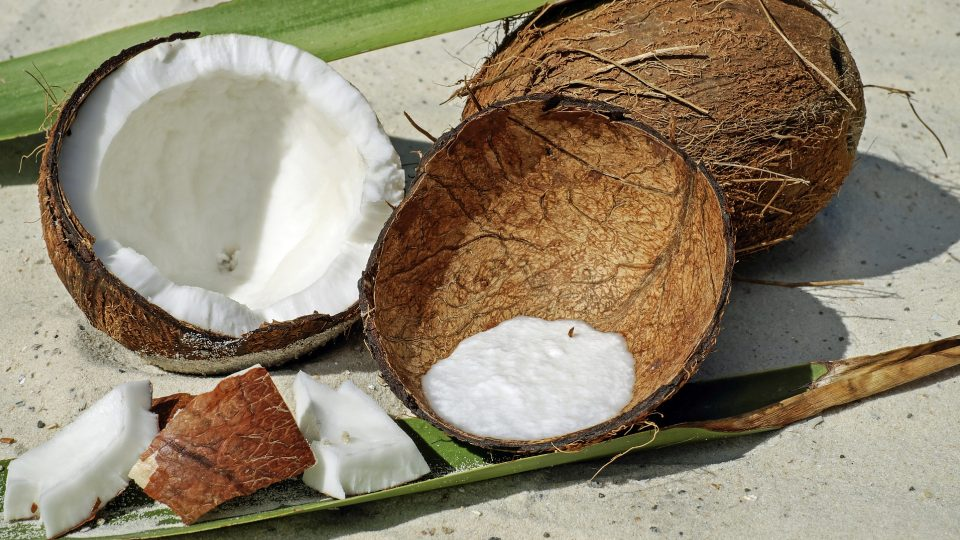 What About Coconuts, Coconut Milk, and Coconut Oil MCTs?