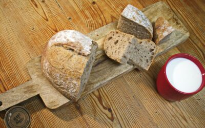 Risks and Benefits of Gluten-Free, Casein-Free Diets for Autism